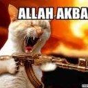 Allah_Akbar