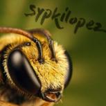 sypkilopez
